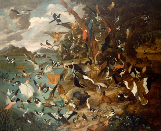 The Parliament of Birds by Carl Wilhelm de Hamilton (1668-1754).
